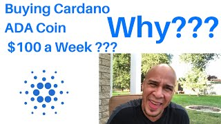 Why I'm Buying $100 Of Cardano ADA Coin Weekly? Despite Price Drop