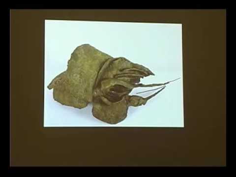 Hannah Wilke: Sculptor and Sculpture
