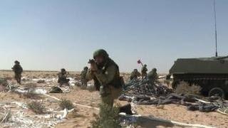 Продолжаются совместные военные учения России и Египта