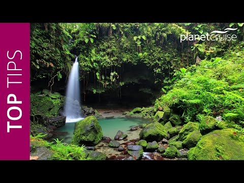 Keith's Top Tips - Dominica, Caribbean | Planet Cruise
