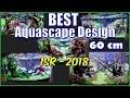 Design Aquascape 60 cm Terbaik dari Indoscapers Race 2018