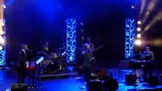 The Divine Comedy - Tonight We Fly [Live - BIME Festival, Bilbao 31/10/2014] [HD]
