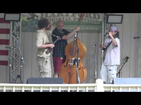 Flatland Harmony Experiment at The John Hartford Memorial Festival in 2013 (Full Set)