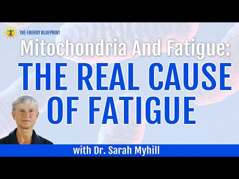 Mitochondria and Fatigue - How to Boost your Mitochondria to beat fatigue with Dr. Sarah Myhill