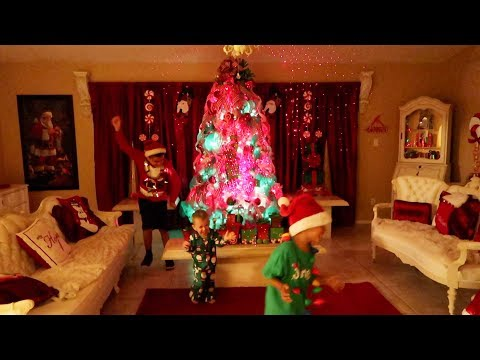 CHRISTMAS DECORATING INSIDE and OUTSIDE 2017