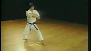 Nijushiho - Shotokan Karate