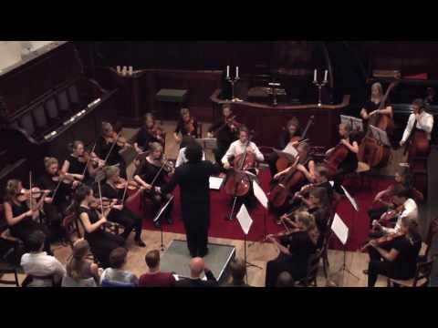 Tchaikovsky - Souvenir de Florence // Vignolle Ensemble