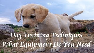 🐕 Dog Training Techniques - What Equipment Do You Need