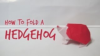 How To Fold A Hedgehog (fuchimoto Muneji)