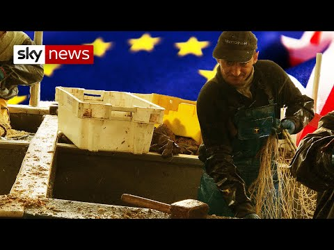 French fisherman fear losing access to British waters in Brexit talks