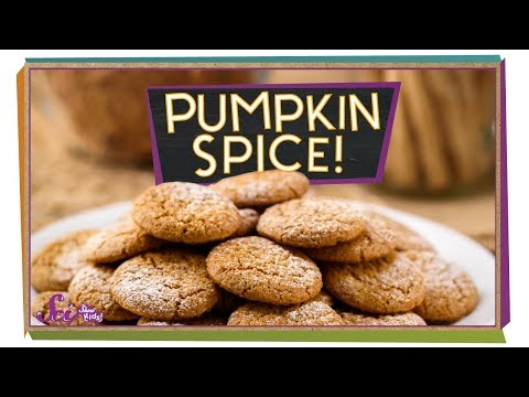 What Is Pumpkin Spice?