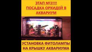 Этап 3.  Посадка орхидей в аквариум. Устройство фитолампы!