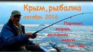 Крым, рыбалка в Партените на море луфарь в октябре