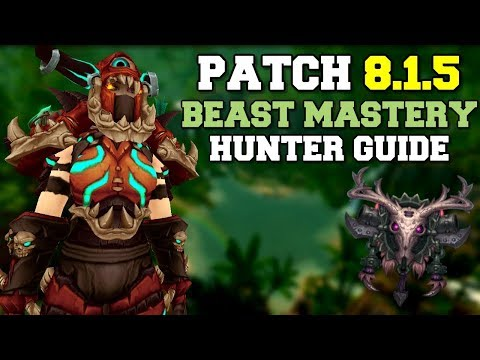 Beast Mastery Hunter DPS Guide 8.1.5 | Talents, Rotation & Stats | World of Warcraft | WoW BfA