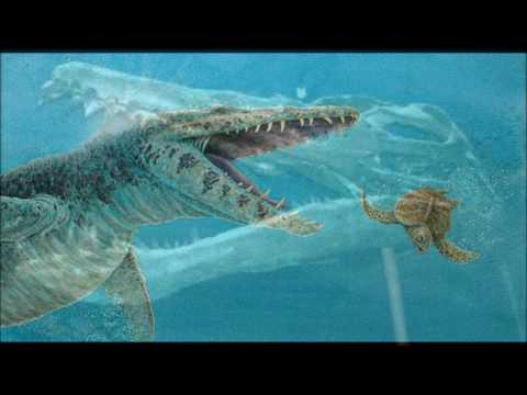 animales-prehistóricos-#2-el-kronosaurus
