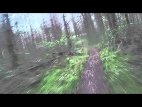 2015 11 14 016 Elvedon Ride hairy