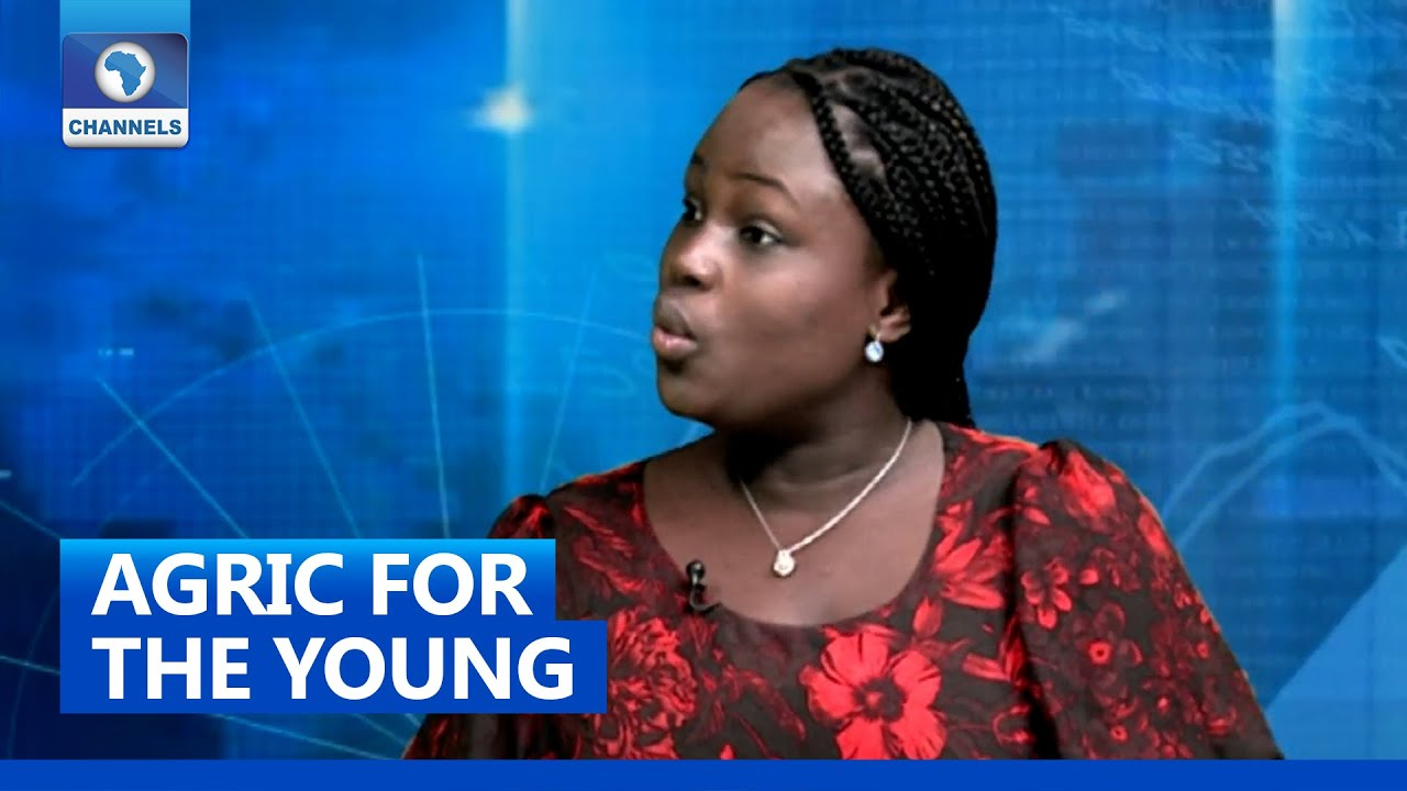 Download Govt  Has To Make Agriculture 'Cool' For Young People - Analyst