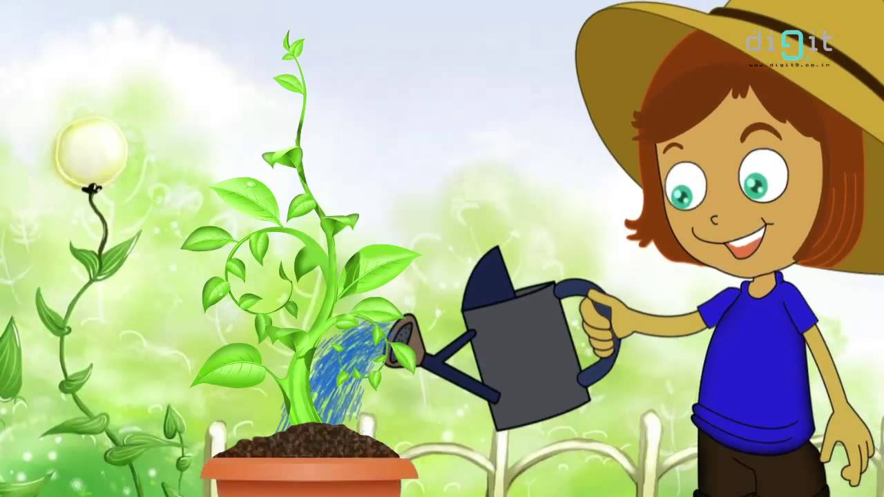 Let's Water The Plants Today - Animated Song For Kids ...