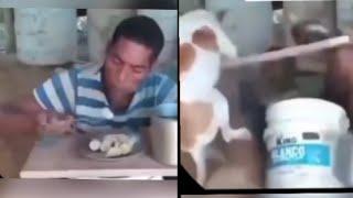 Приколы 2021 смешное видео смешные видео смешное видео с животными