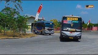 KEJAR KEJARAN !! MENTAL MENTUL KANAN KIRI    Wonderful Aksi Bus Di T Kartenegoro Ngawi.
