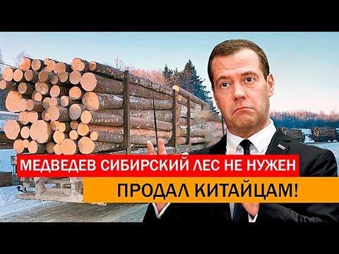 У Медведева спросили
