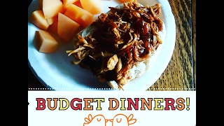 Budget Dinners of the Week! Jan2017- Recipes Linked