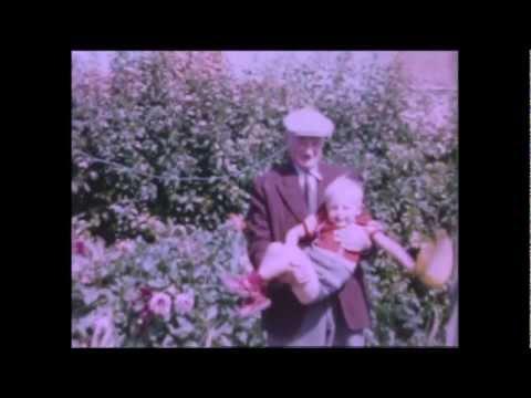 Kapitan Korsakov - In the Shade of the Sun (music video)