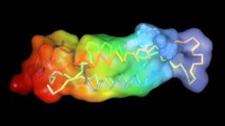 Molecular structure of ribgrass mosaic virus