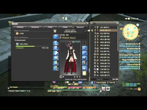 Final Fantasy XIV W Cross HotBar (WXHB) Tutorial by House of