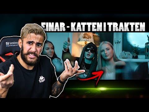 TARZAN REAGERAR PÅ ''EINAR - KATTEN I TRAKTEN''