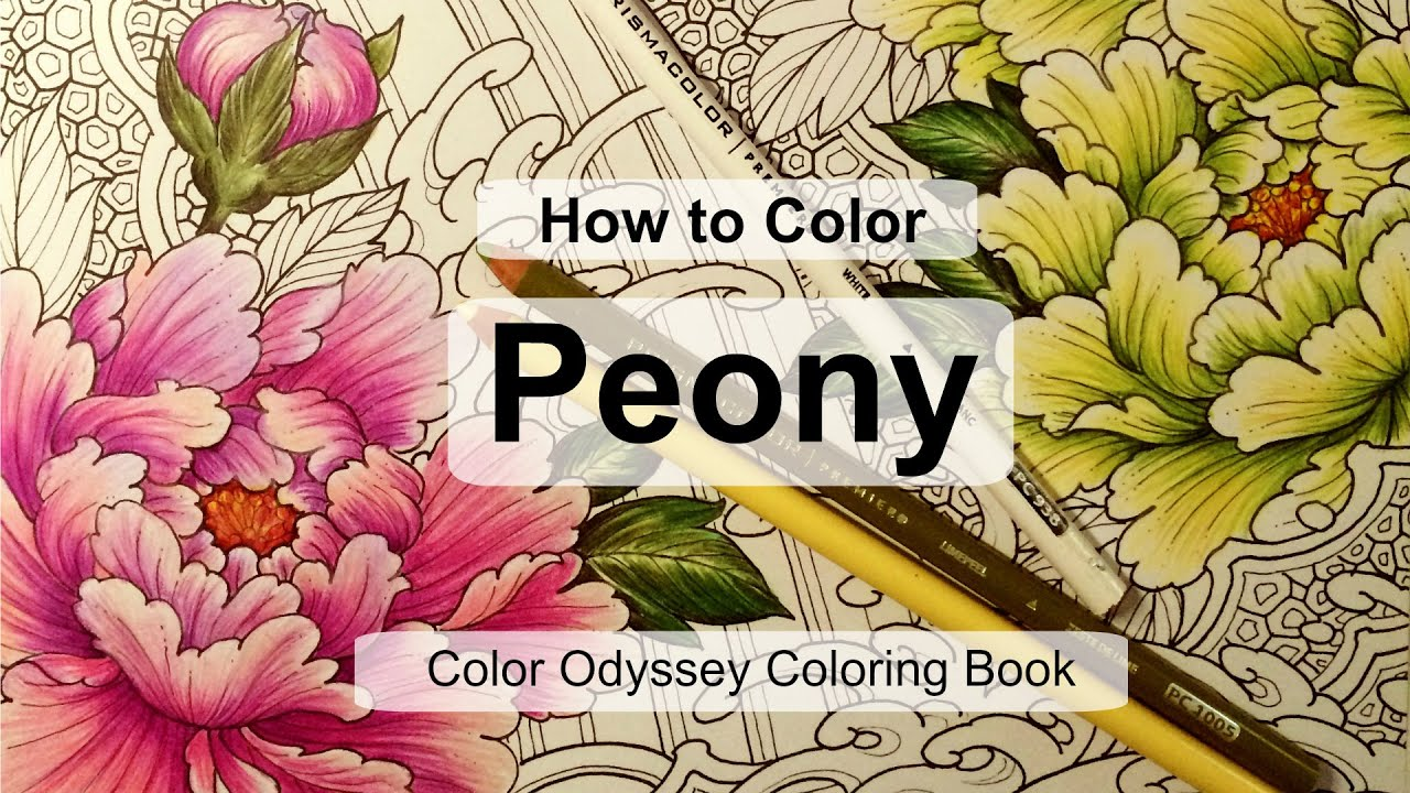 How to Color Peony | Adult coloring book: Color Odyssey by Chris ...