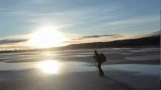 Sällskapsresan 7 -- Skateroller