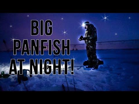 BIG Panfish At NIGHT! (COMPLETE DARKNESS)