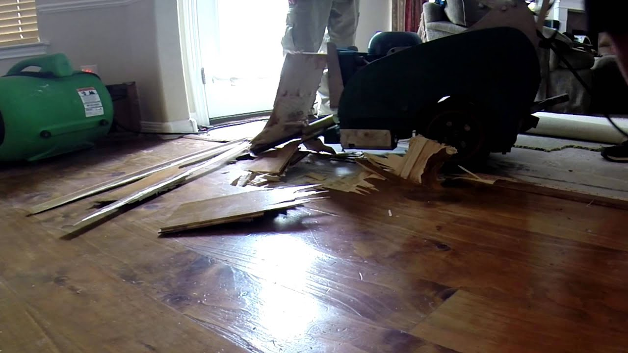 Hardwood Floor Stripping Part - 32: Removing Hardwood Floor With A Floor Scraper