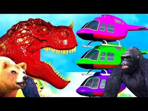 Wild Animals Run for Color Helicopters | #Gorilla Lion Bear Dinosaurs Animation for #kids