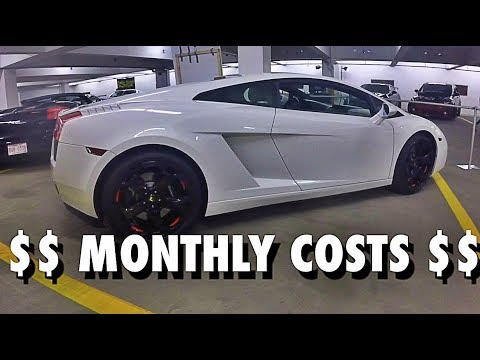 Lamborghini Gallardo Monthly Costs How To Budget Youtube