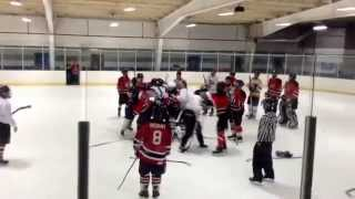 Beer league hockey fight