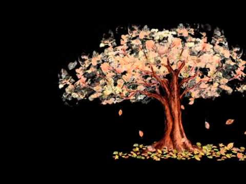 Falling Leaves Wallpaper Animated Falling Autumn Leaves Animation Youtube