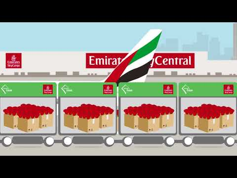 A Flower's Journey | Emirates SkyCargo
