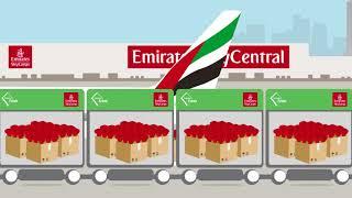 A Flower's Journey | Emirates SkyCargo