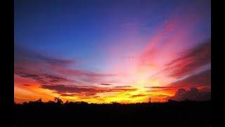 Download Suara pikat semua burung kecil dijamin dapat