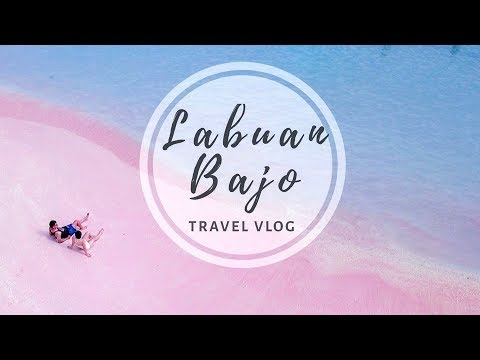 Labuan Bajo Travel Guide : Komodo Dragon and Island Hoping in Flores  Indonesia Travel Vlog