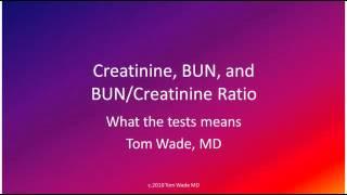 Renal function test BUN,CREA, BUNCREA RATIO
