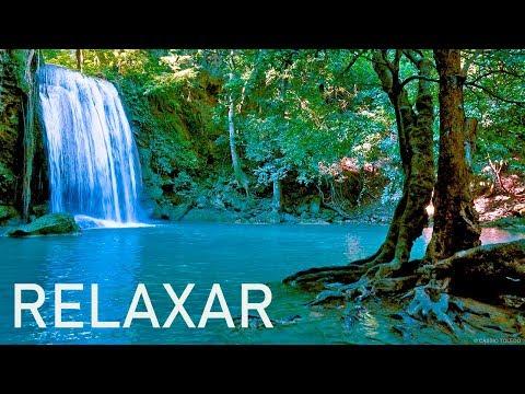 Música Relaxante 24/7 🔴 Sinta-se em Paz - Relaxar e Dormir 2