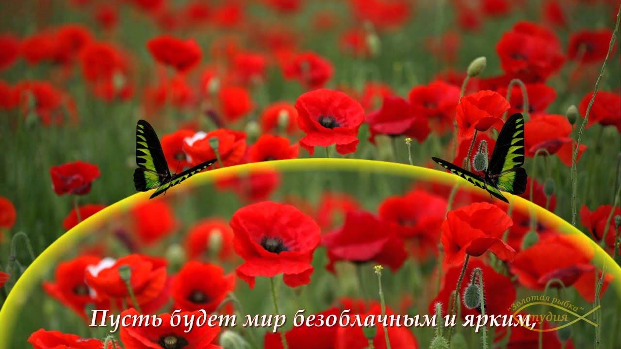 Поздравление с днем рождения картинки цветы фото 102