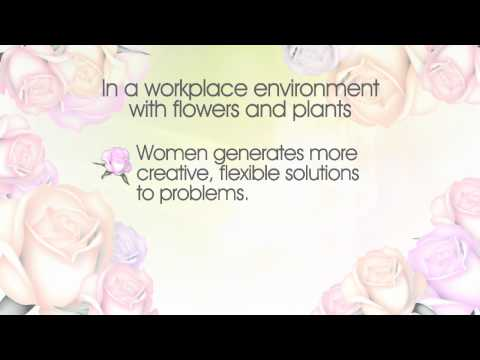 Can Flowers Increase Productivity In the Workplace? | Watanabe Floral Honolulu, Hawaii Florist