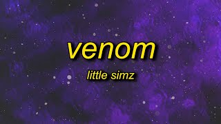Little Simz - Venom (Lyrics) | it's a woman's world so to speak venom