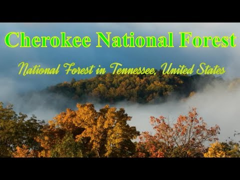 Cherokee National Forest, National forest in Tennessee, United States - The Best National Forest