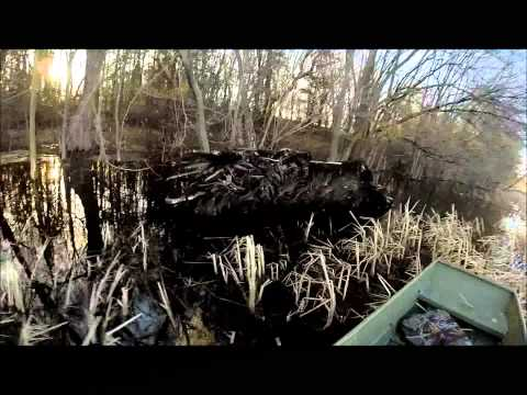 Rivers Layout Boats Ebads Dixie Mud Motors 10hp Running In
