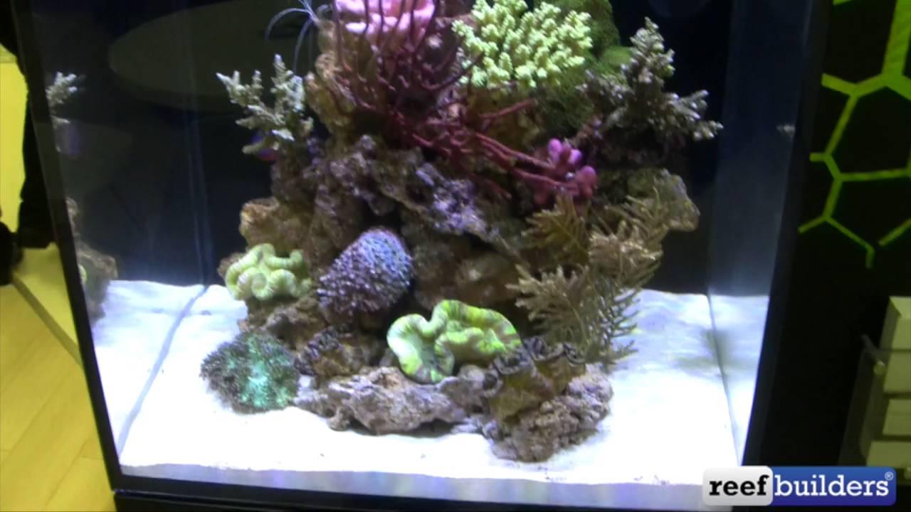 red sea max nano all in one aquarium with aquaillumination prime led